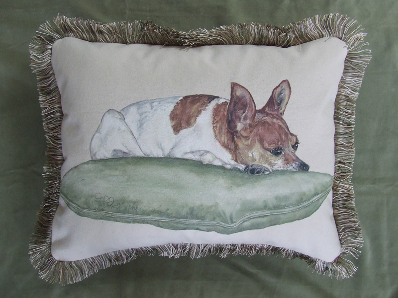 Peanut On A Pillow