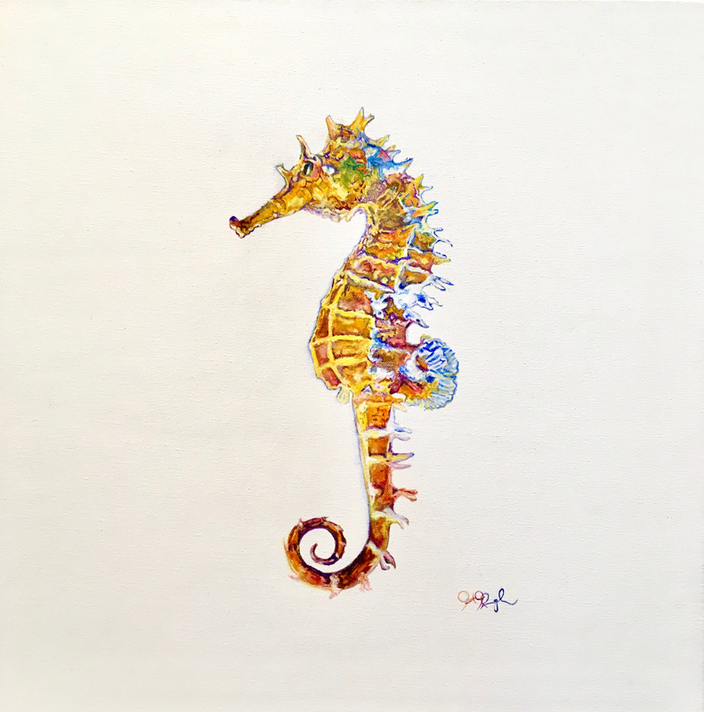 Seahorse in Silhouette